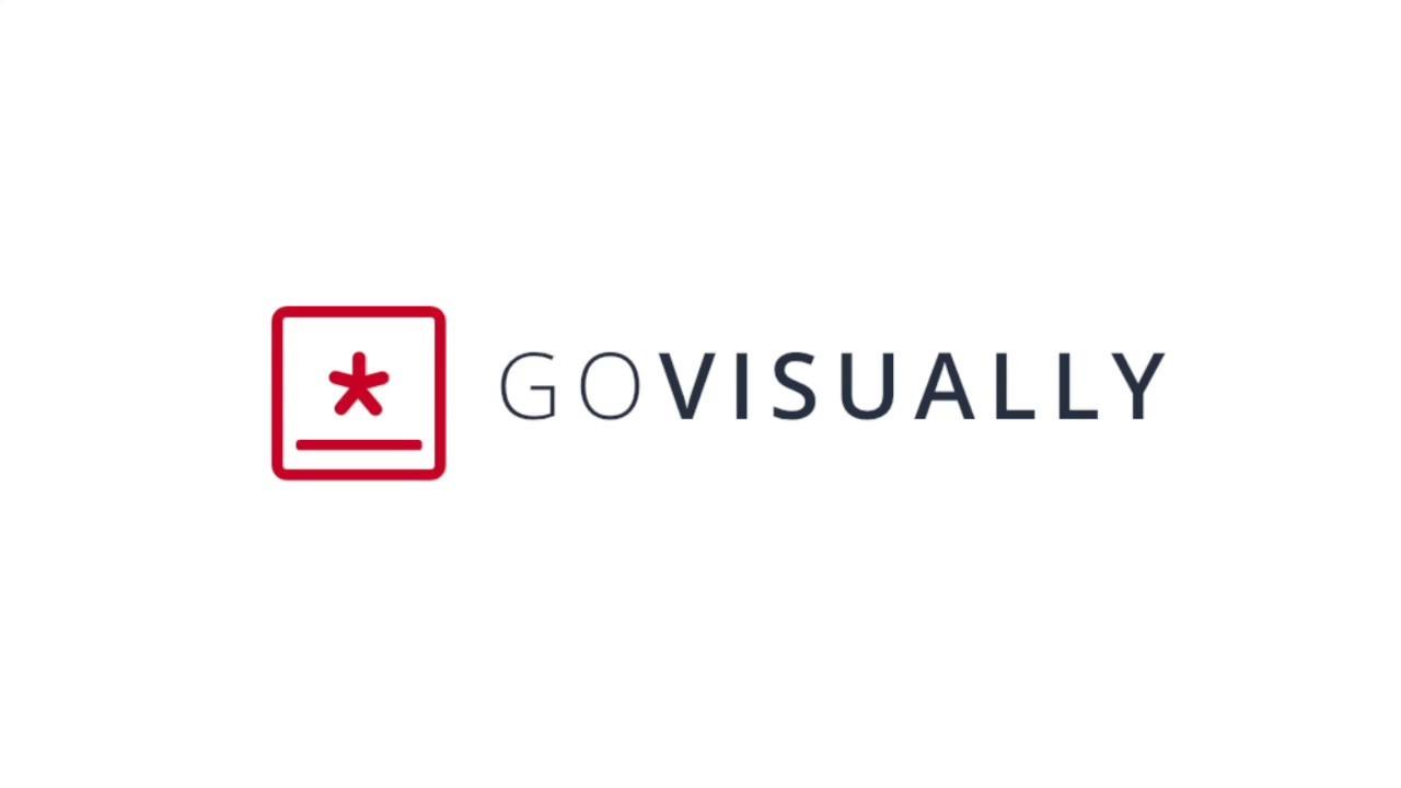 GoVisually logo on the blank screen