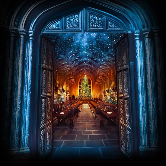 Richard Davies's Christmas Harry Potter cover